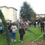 Festa Albero 2015