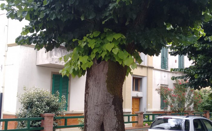 via-pampaloni_3